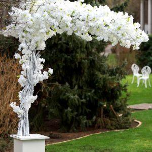 stasevents kirschblütenbaum kirschbaum kirsch baum mieten hochzeit leihen hochzeitsdeko eingangsbereich eingang