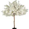 kirschbaum cherry blossom mieten hochzeit kirsch baum bäumchen groß xxl 3 meter sunnydeko hochzeitsdeko leihen verleih