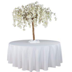 kirschbaum kirschblütenbaum kirsch baum mieten leihen cherry blossom weiss rosa hochzeit event deko sunnydeko