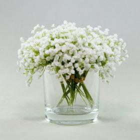 Glas Blumenglas Standy rund zylinder glas kerzen mieten 1
